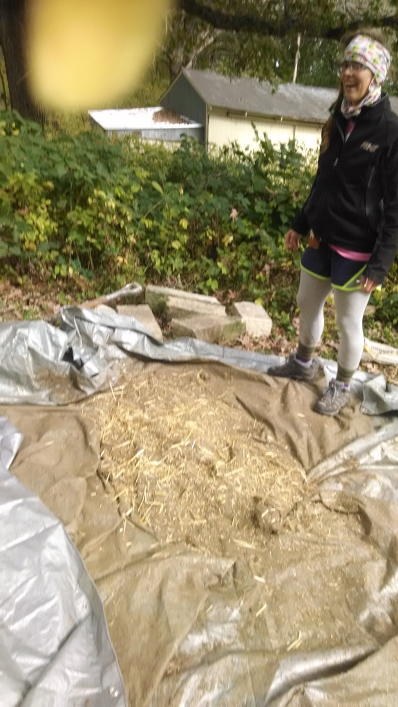 Andrea Blaha, doing the mud stomp with straw, clay and sand to form the second thermal layer of cob.