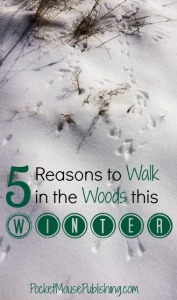 5 Reasons to Walk in the Woods