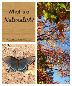 What is a Naturalist?