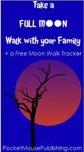Full Moon Walk April 2015 Lunar Eclipse/Blood Moon
