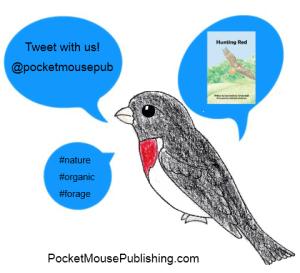 Connect with Pocket Mouse Publishing on Twitter @pocketmousepub