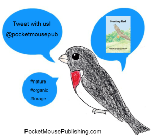 Connect with Pocket Mouse Publishing on Twitter @pocketmousepub