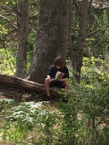 Sometimes Forest Freeplay means just reading a book