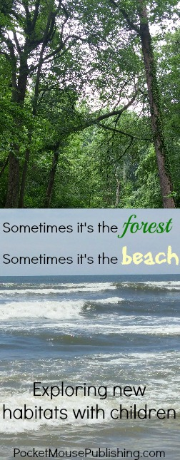 Exploring different habitats - forest and beach