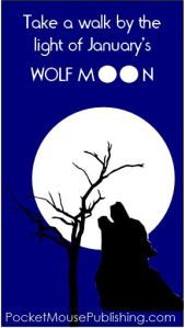 Take a walk by the light of the full Wolf Moon this January!