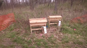 These cedar top-bar style bee hives will ensure good pollination of the trees and plants. And honey!